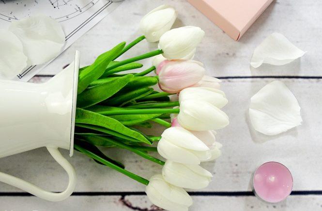 tulipani-svijece-zara